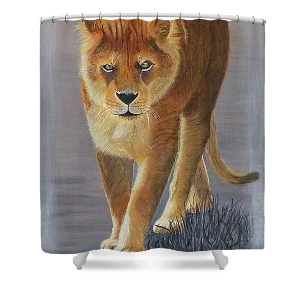 Young Male Lion Shower Curtain
