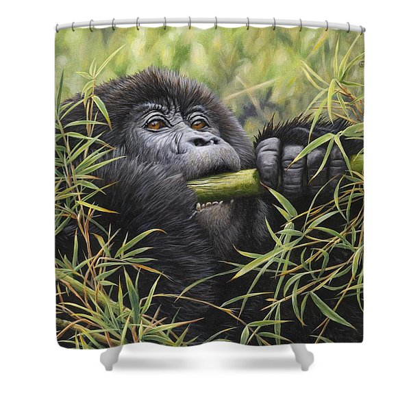 Shower Curtain featuring the painting Young Mountain Gorilla by Alan M Hunt