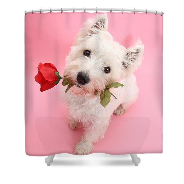 Your Valentine Every Day Shower Curtain