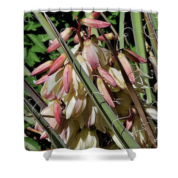 Yucca Bloom I Shower Curtain