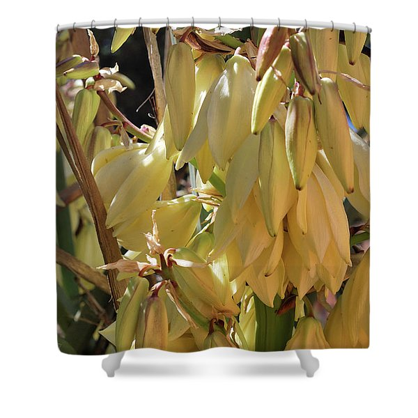 Yucca Bloom II Shower Curtain