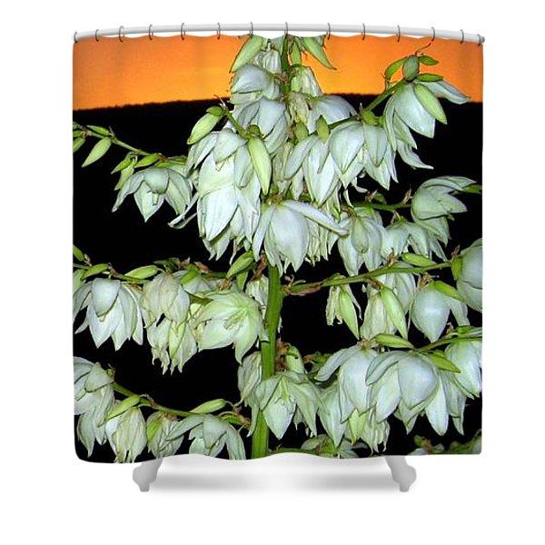 Yucca Sunset Shower Curtain