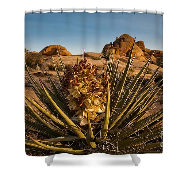 Yucca Bloom Shower Curtain