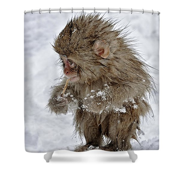 Yummy? Shower Curtain