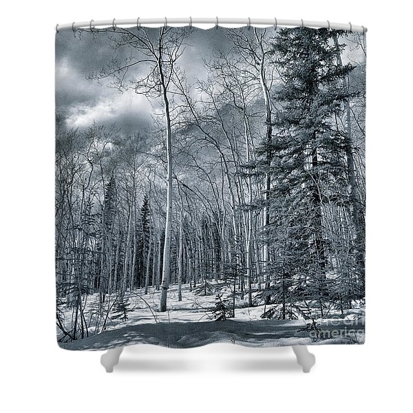 Land Shapes 35 Shower Curtain