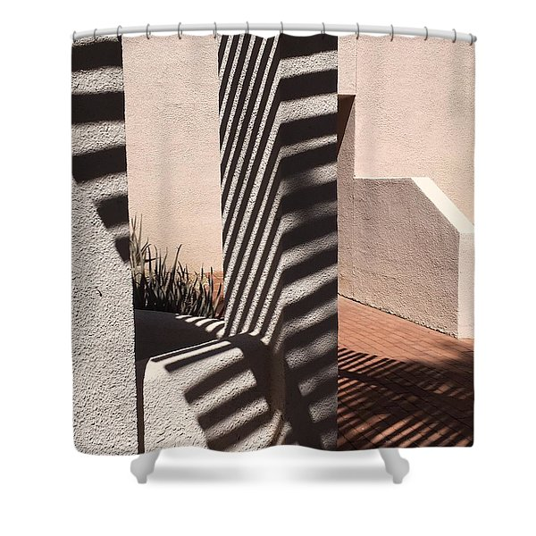 Zebra Adobe Shower Curtain