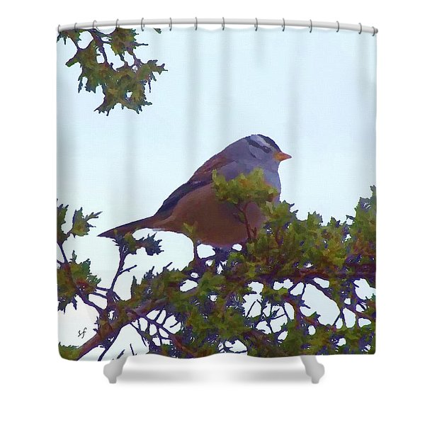 White Crowned Sparrow In Cedar Shower Curtain