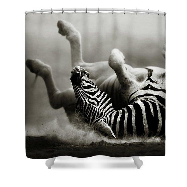 Zebra Rolling Shower Curtain