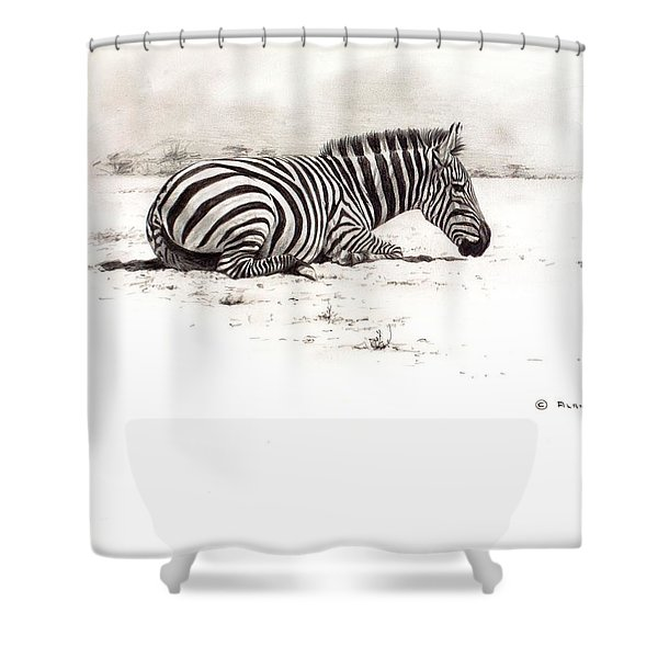 Shower Curtain featuring the painting Zebra Sketch by Alan M Hunt