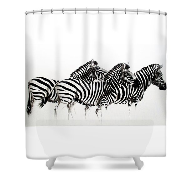 Zebras - Black And White Shower Curtain