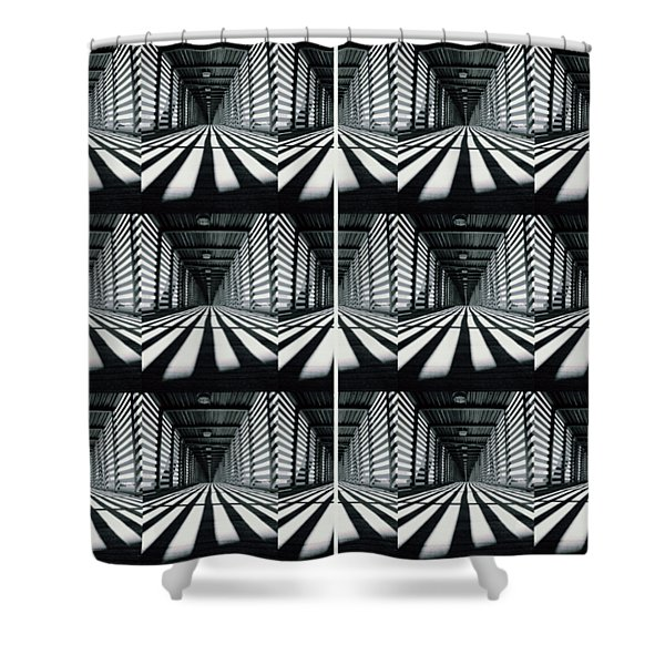 Zebras  Crossing Art Shower Curtain