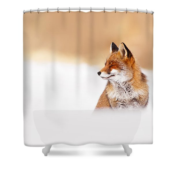Zen Fox Series - Zen Fox In Winter Mood Shower Curtain