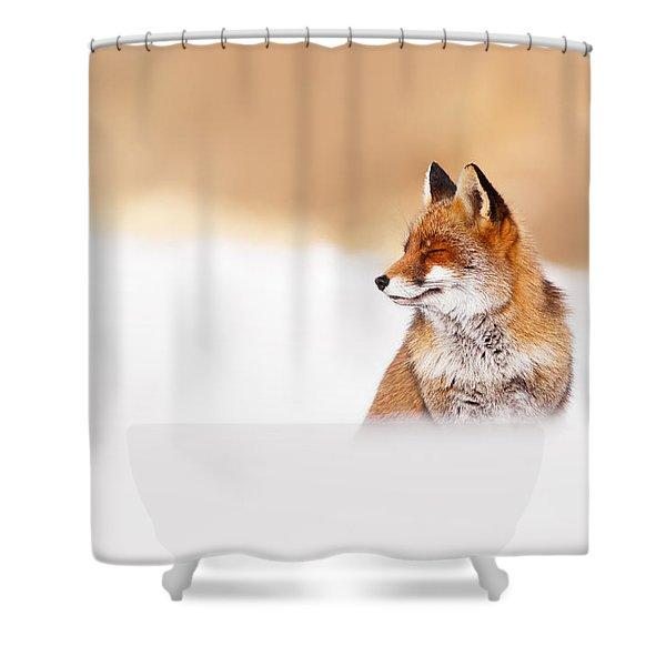 Zen Fox Series - Zen Fox In Winter Mood Shower Curtain