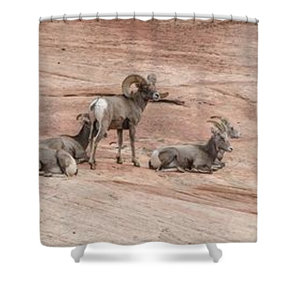 Zion Family Shower Curtain