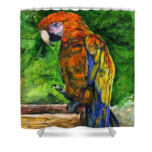 Zoo In St. Maarten Shower Curtain