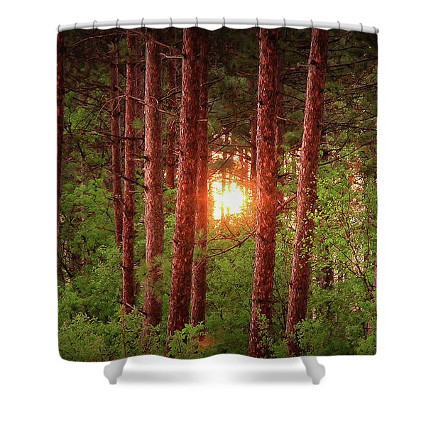 010 - Pine Sunset Shower Curtain