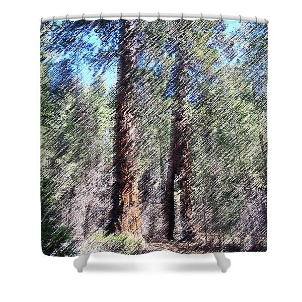 010219 Red Woods California Shower Curtain