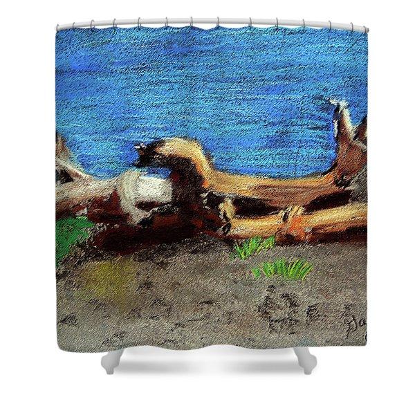 012519 Yellow Stone Lake Shore Shower Curtain
