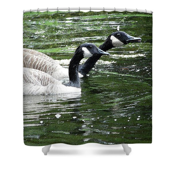031619 Geese City Park New Orleans Shower Curtain