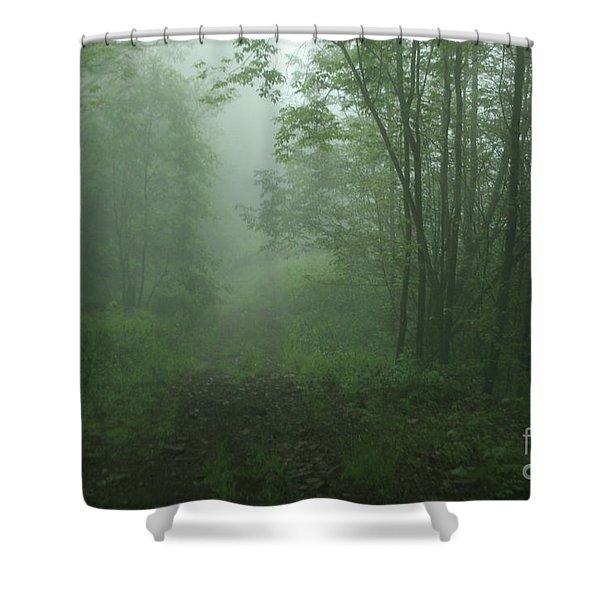 1-15-2009i Shower Curtain