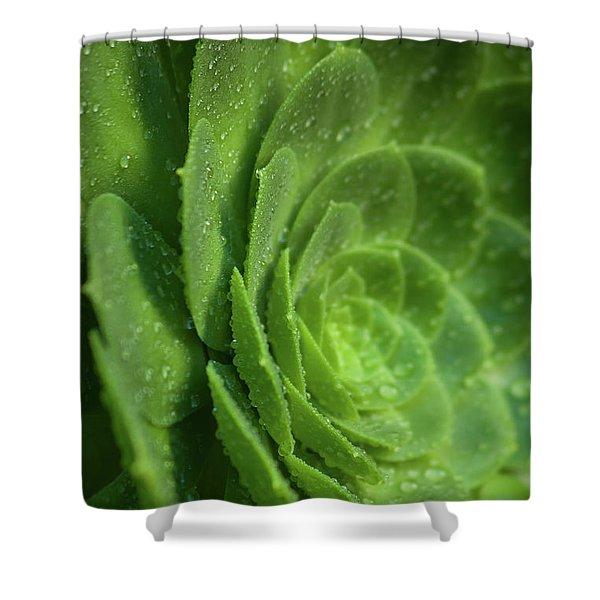 Aenomium_4140 Shower Curtain