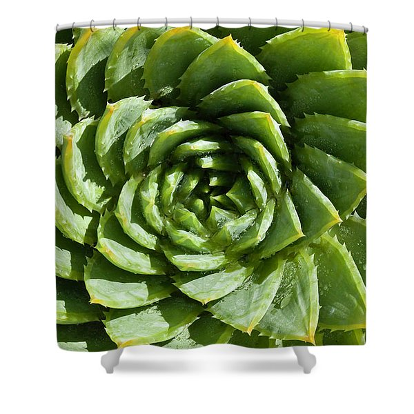 Aloe_polyphylla_8536.psd Shower Curtain