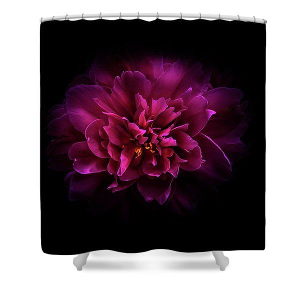 Backyard Flowers 55 Color Version Shower Curtain