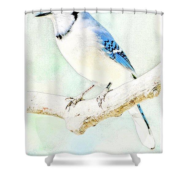 Blue Jay Shower Curtain