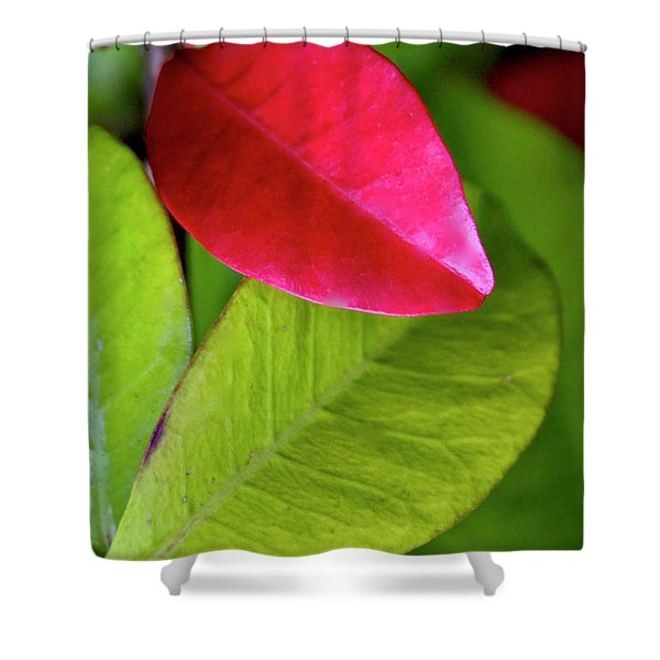 Colours. Red Shower Curtain