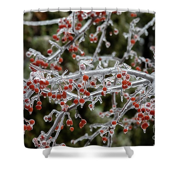 Crab Apple Tree Shower Curtain