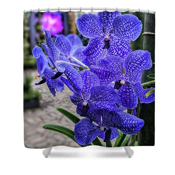 Deep Purple Orchid Shower Curtain