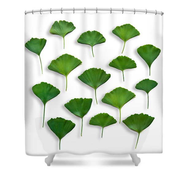 Gingkos Spring Shower Curtain