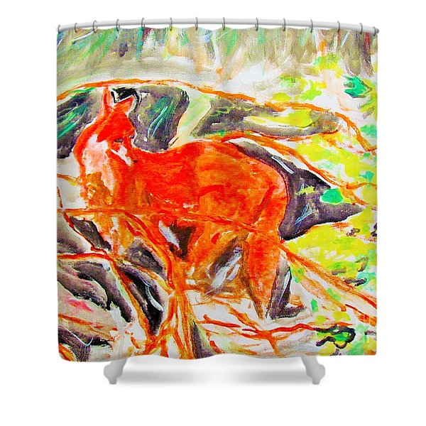 Hidden Fox Shower Curtain