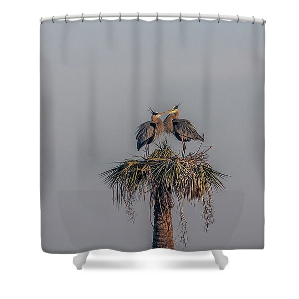 It Must Be Love Shower Curtain