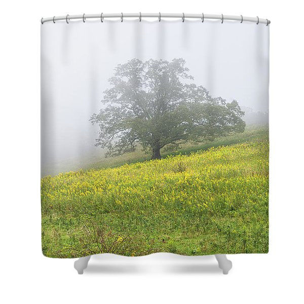Lone Tree Hill - Blue Ridge Parkway Shower Curtain