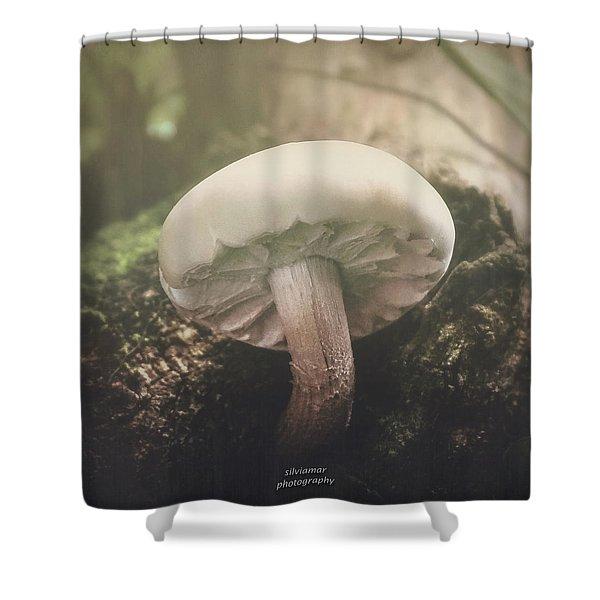 Look At The Mushroom Shower Curtain