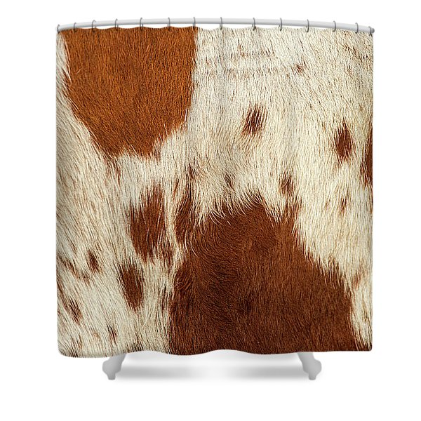 Shower Curtain featuring the photograph Pattern Of A Longhorn Bull Cowhide. by Rob D Imagery