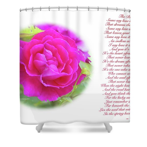 Pink Rose And Song Lyrics Shower Curtain