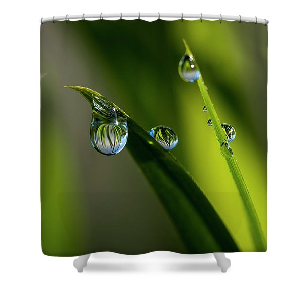 Rain Drops On Grass Shower Curtain