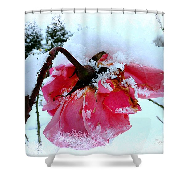 The Last Rose Shower Curtain