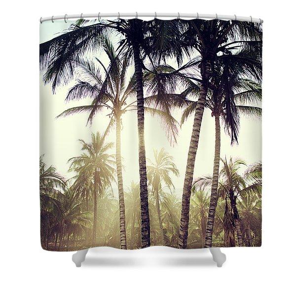 Ticla Palms Shower Curtain
