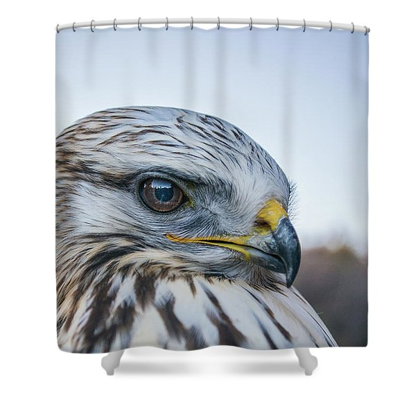 Shower Curtain featuring the photograph B2 by Joshua Able's Wildlife
