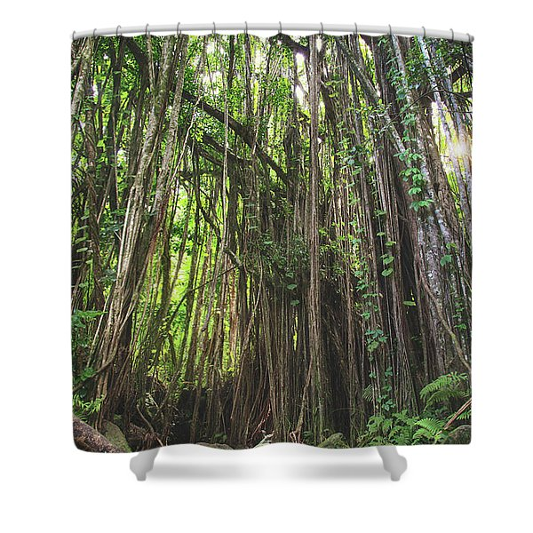Where Life Takes Us Shower Curtain