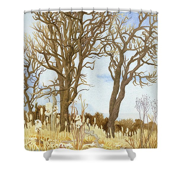 Winter Cottonwoods And Cattails Shower Curtain