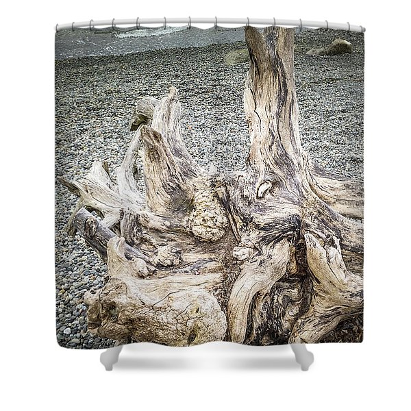 Shower Curtain featuring the photograph Wood Log In Nature No.35 by Juan Contreras