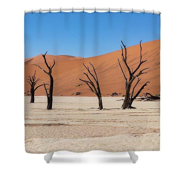 Deadvlei Shower Curtain