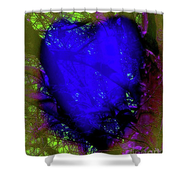 2-16-2009abcdefg Shower Curtain