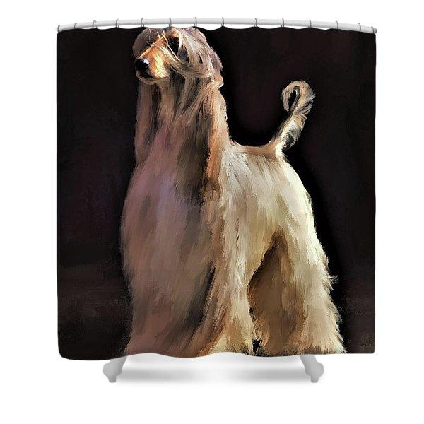 Afghan Hound Shower Curtain