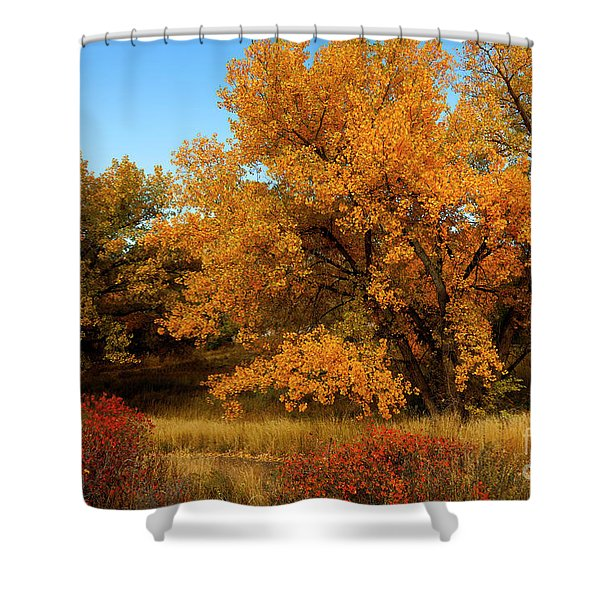 Colorado Autumn Shower Curtain