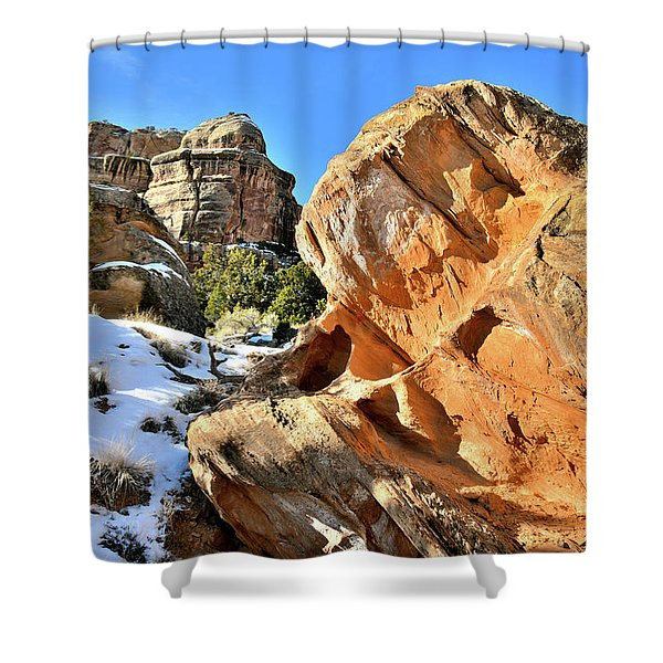 Colorful Colorado National Monument Shower Curtain